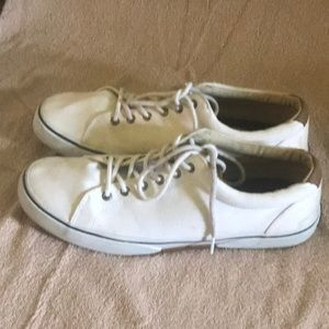 Sperry Shoes - Mens Sperry size 12
